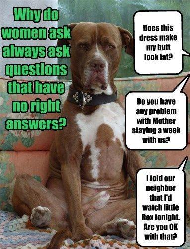 dogs caption questions women