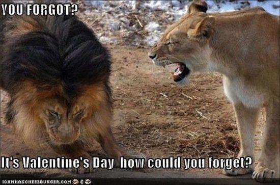 Happy Valentines Day Memes 2018 Anti Valentines Memes Funny Valentines Memes