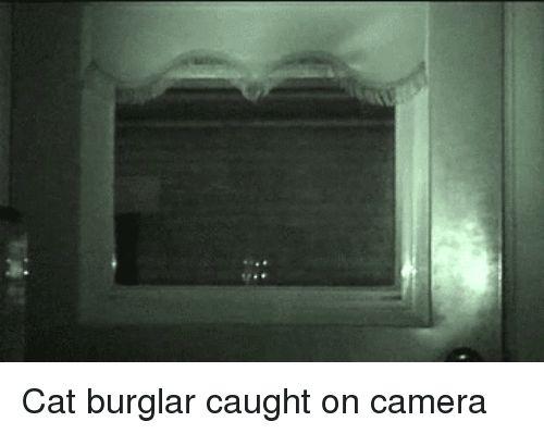 Funny Camera and Stalker Cat burglar caught on camera