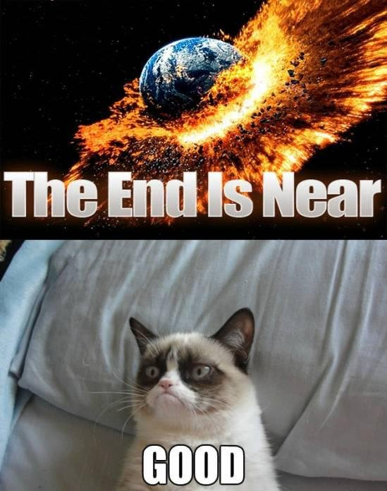 Grumpy cat end of the world