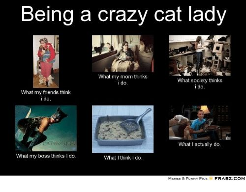 Crazy Friends and Funny Being a crazy cat lady What my mom thinks