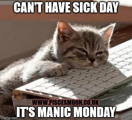 Nice Sick Cat Meme Manic Monday Sick Day Imgflip