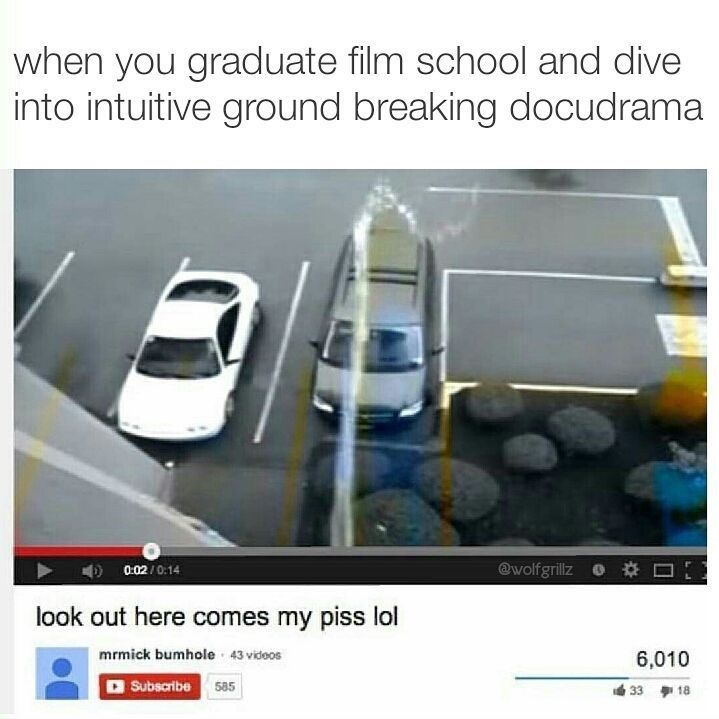 Funny meme from wolfgrillz about graduating from film school and filming yourself pissing on a car