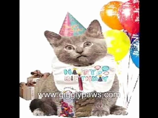 Funny Cat Happy Birthday Cards Awesome Very Singing Video Ecard Dailymotion
