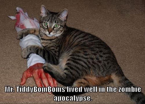 animals apocalypse zombie Cats