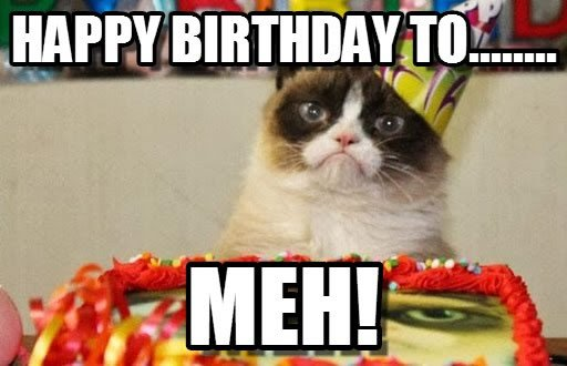cat happy birthday grumpy cat meme cactus the cranky cat birthday