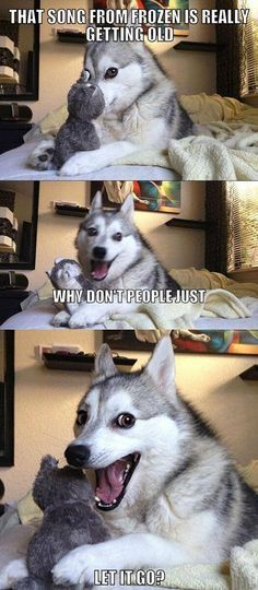 22 Awesome Things You Didn t Know About Your Dog Pun Dog MemeFunny