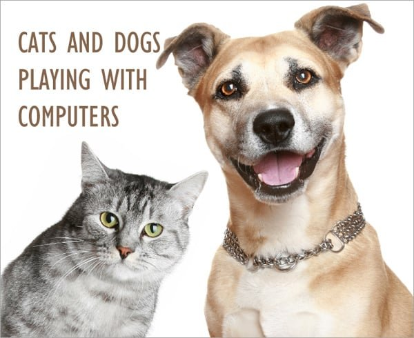 Funny demotivators and cartoons of cats and dogs playing with puters and laptops