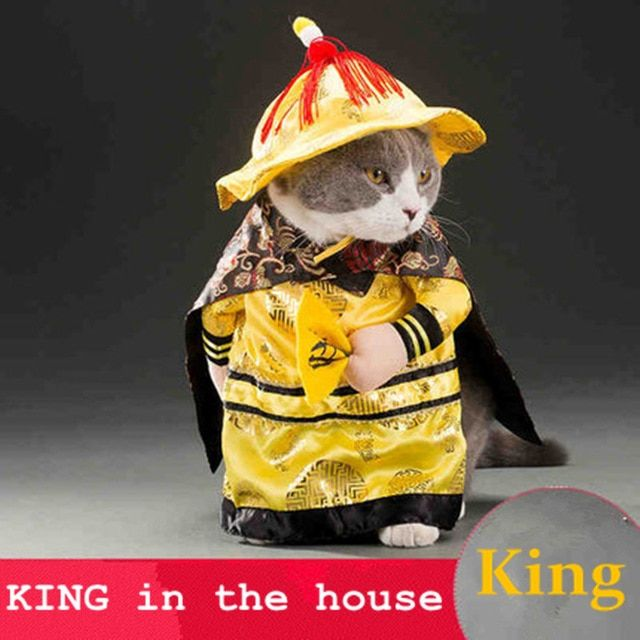 Hot sale Cats outfit small Dog Puppy Cat Pet Costume Clothes Golden King Empire Cosplay Costumes