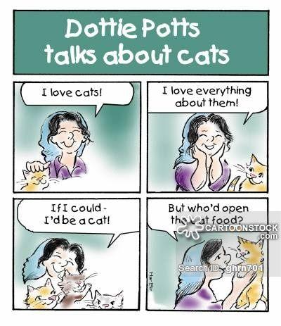 Mad Cat La s cartoons Mad Cat La s cartoon funny Mad Cat La s picture