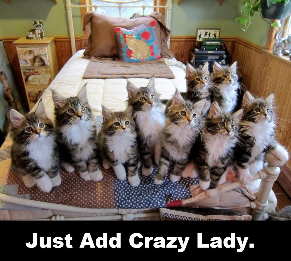 just add crazy lady