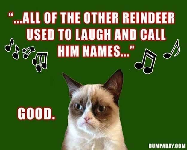 12 Days Grumpy Cat Christmas