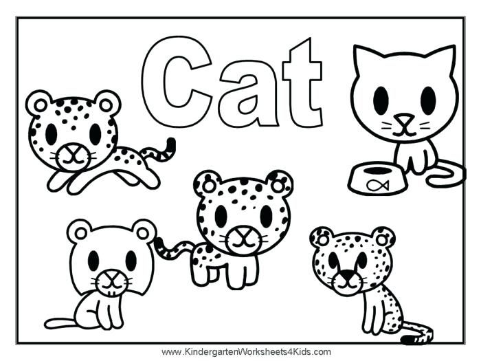 coloring pages for cats cat kitty page printable home improvement cute