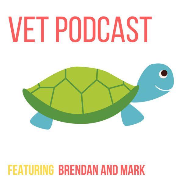 Veterinary Podcast by the VetGurus by Brendan Carmel and Mark Simpson on Apple Podcasts