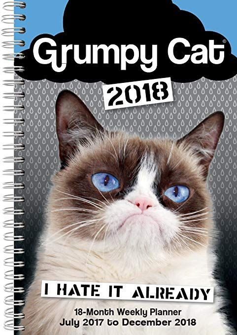 Grumpy Cat 2018 Engagement Calendar CW0232