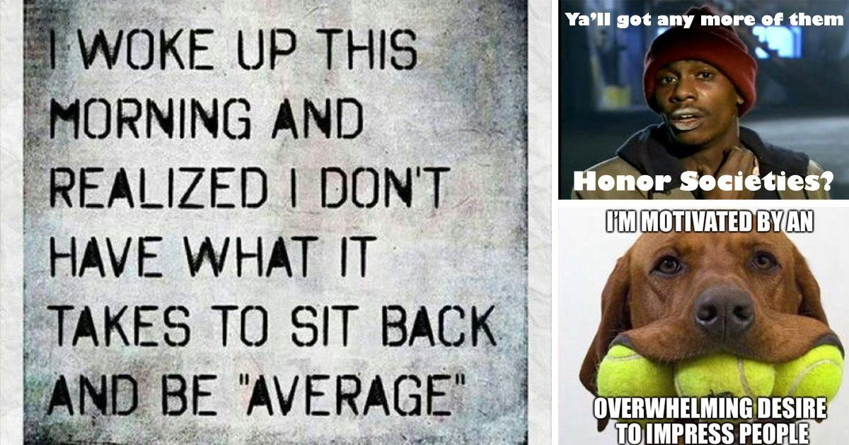 Grasp the Fascinating Weiner Dog Funny Memes