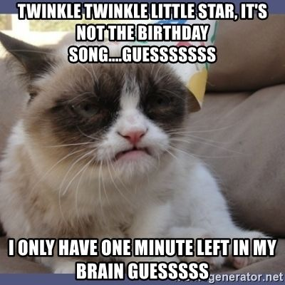 Twinkle Twinkle Little Star it s not the birthday song esssssss I only have one minute left in my brain Guesssss Birthday Grumpy Cat