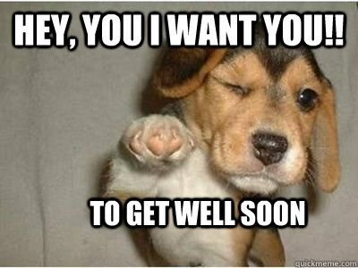 ely 35 Cats And Other Cute Animals Winking Lol Pinterest With Get Well Soon Quotes Funny s