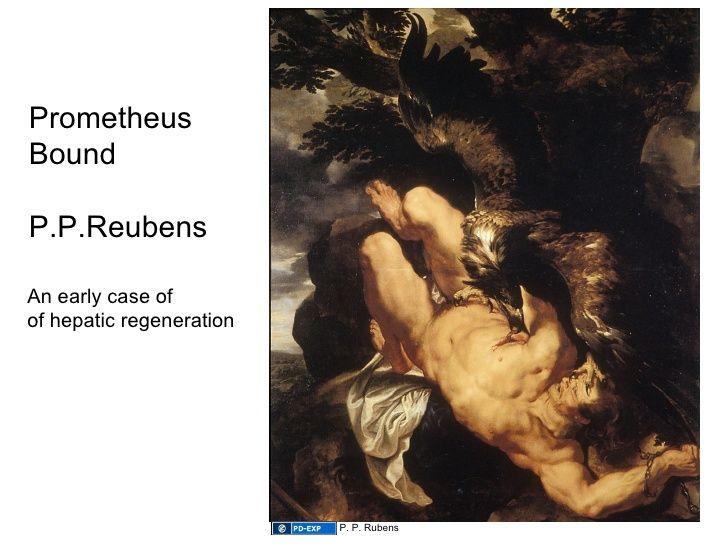 regeneration P P Rubens 83