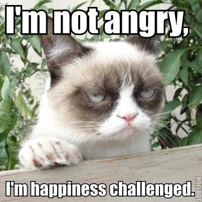 I m Not Angry