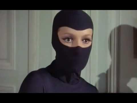 The masked female cat burglar s caught