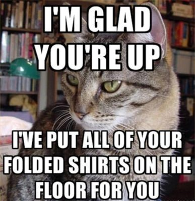 I ve put all of your shirts on the floor for you