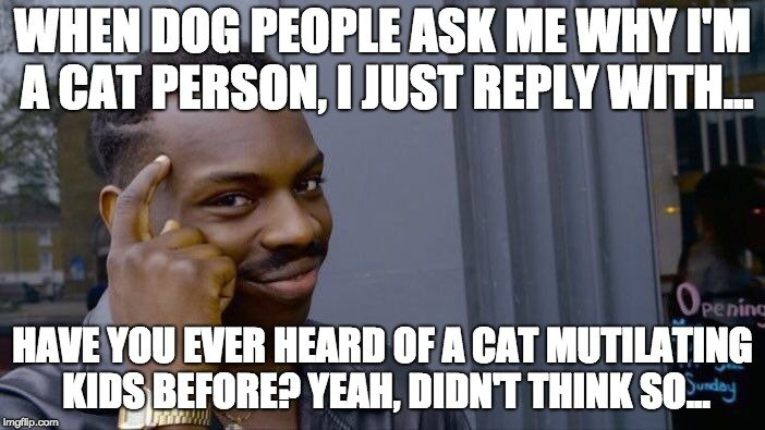 You ask Why I m a Cat Person