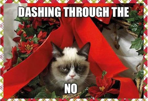 Grasp the Marvelous Funny Grumpy Cat Memes Clean