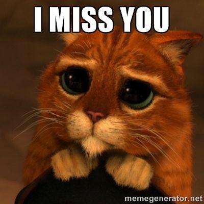Miss You Cat Meme