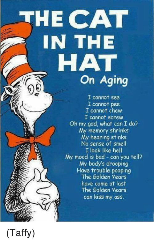 Memes Mood and Oh My God THE CAT IN THE HAT on Aging