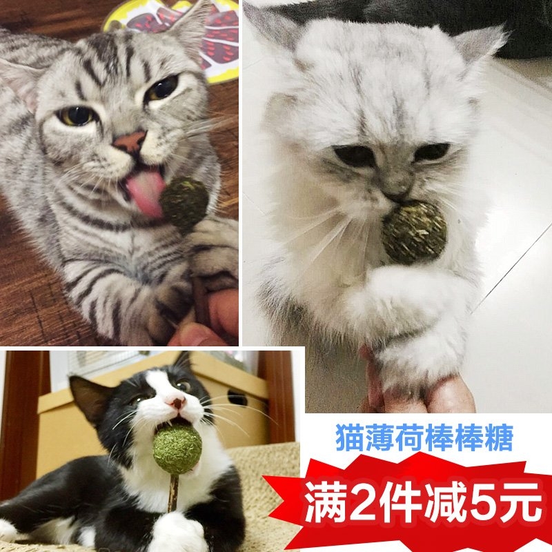Cat toy supplies double head catnip clean teeth small funny cat stick teeth clean teeth cat
