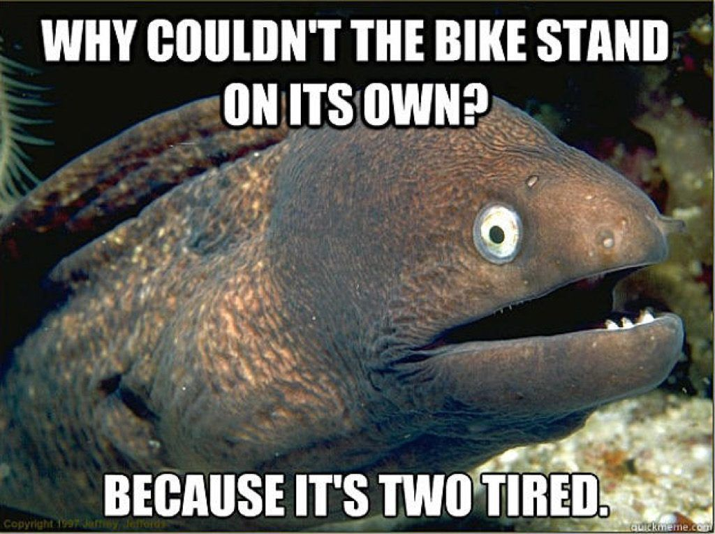 Bad Joke Eel meme