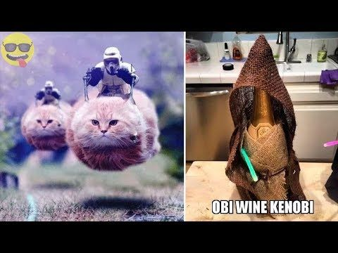 Things ly Star Wars Fans Will Find Funny