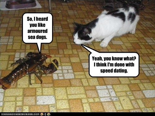 captions Cats creepy date lobster love romance speed dating