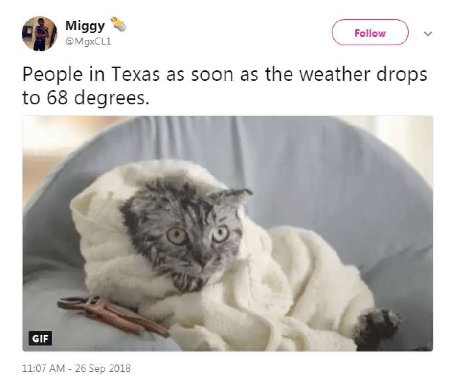 Twitter MgxCL1 People in Texas as soon as the weather drops to 68