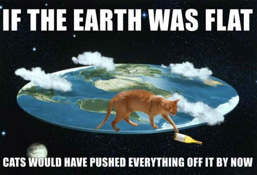 Flat earth cat meme