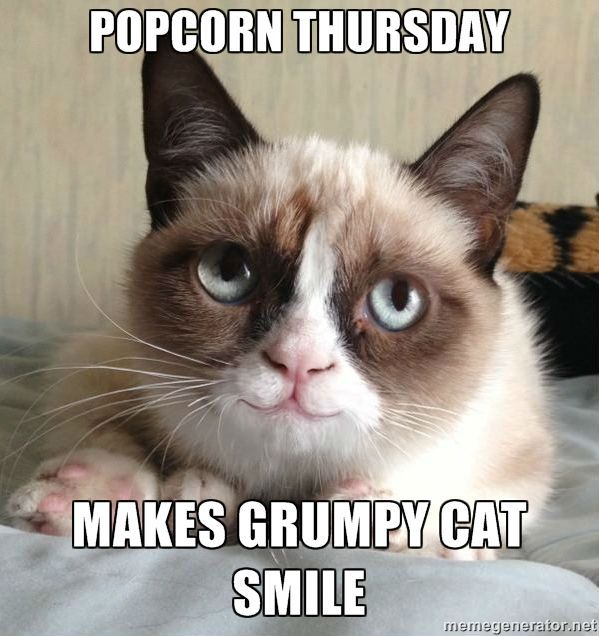 Happy Thursday Cat Meme Bing images