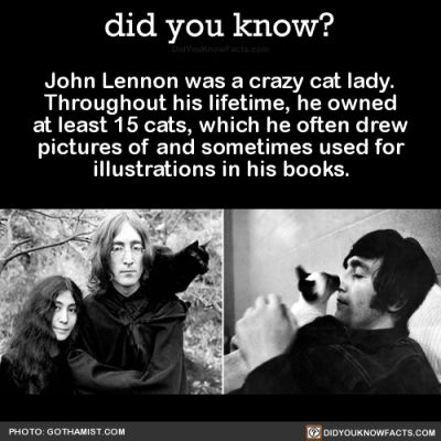 t umblr redirect John Lennon was a crazy cat