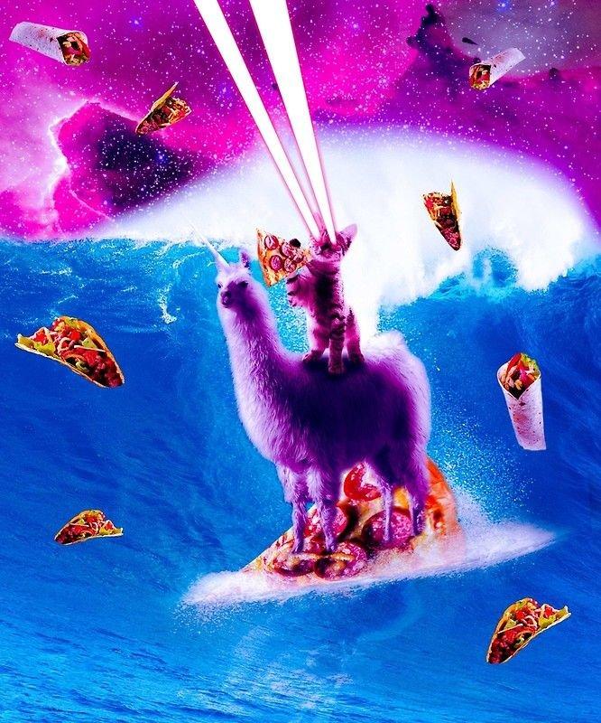 Laser Eyes Space Cat Riding Surfing Llama Unicorn by SkylerJHill