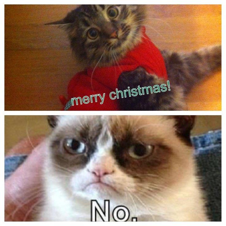 Merry Christmas Grumpy Cat Danny Hahaha