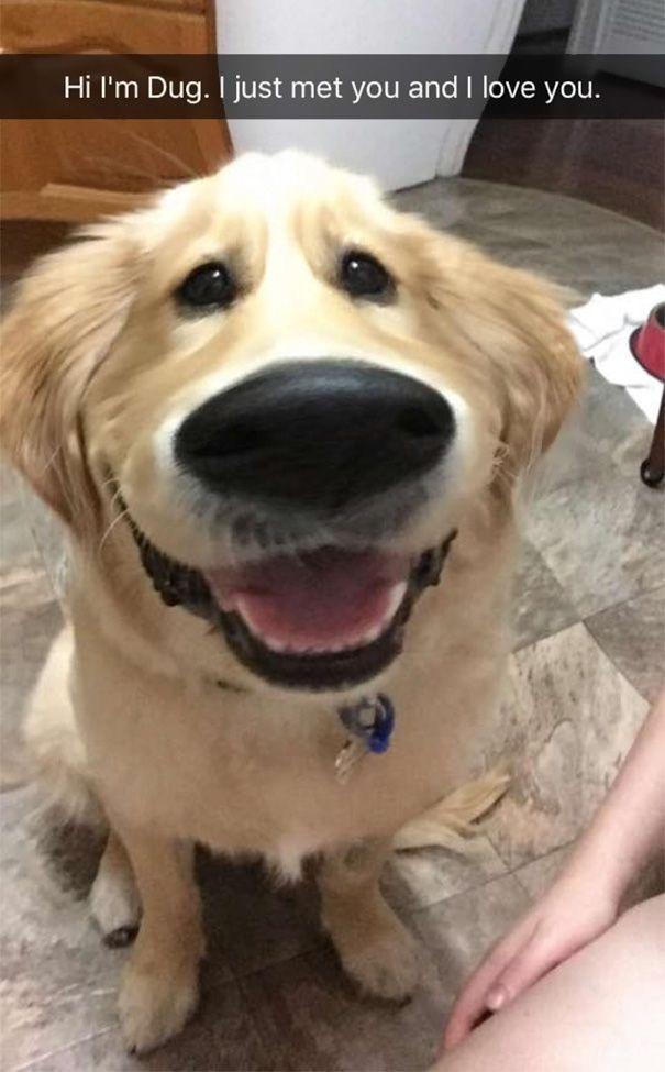 Hi My Name is Doug