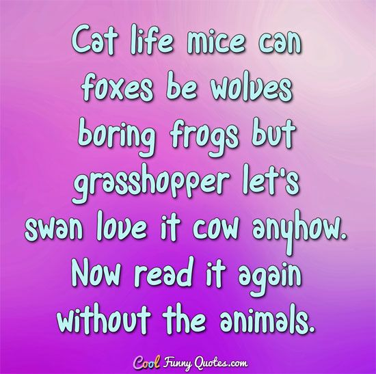 Cat life mice can foxes be wolves boring frogs but grasshopper let s swan love it cow anyhow Now read it again without the animals