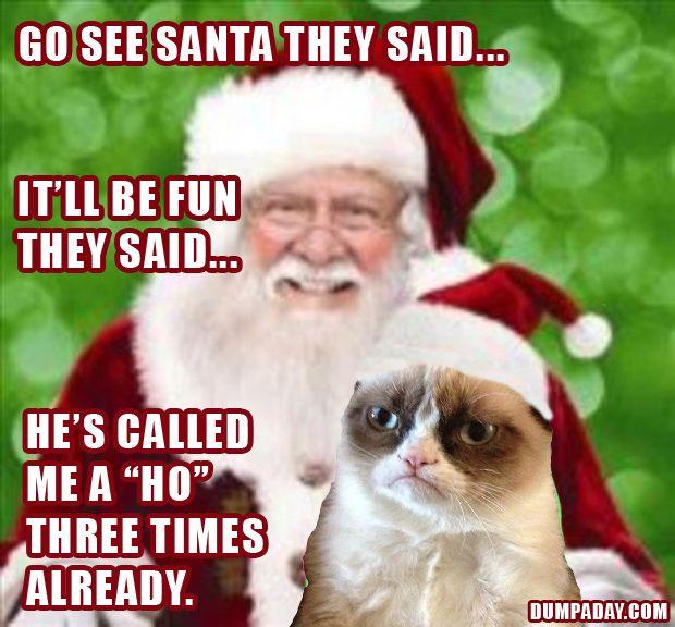 Funny Grumpy Cat Meme Christmas