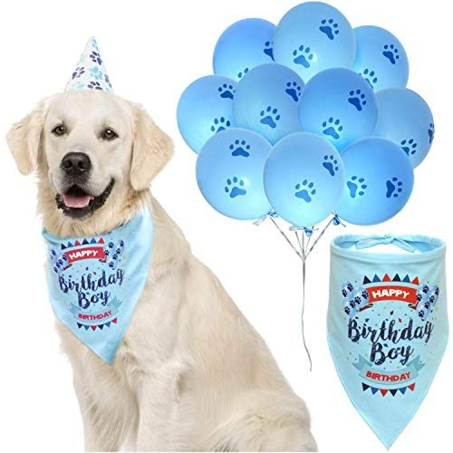ZO iq Dog Birthday Boy Bandana with Paw Print Party Cone Hat and 10 Balloons Great