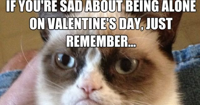 grumpy cat on being alone on valentine s day dr heckle funny memes