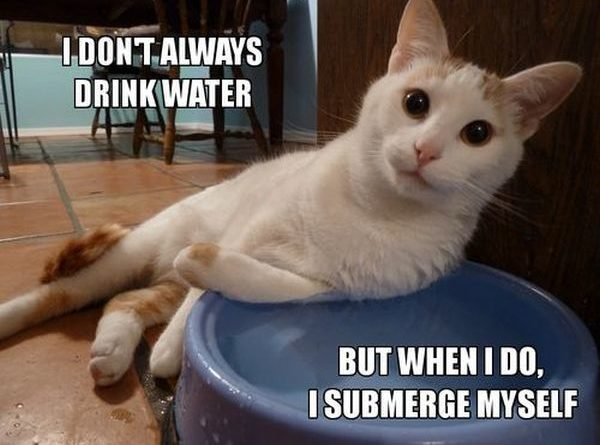I Dont Always Drink Water But When I Do