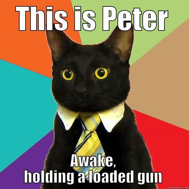 Divergent Peter THIS IS PETER AWAKE HOLDING A LOADED GUN Business Cat
