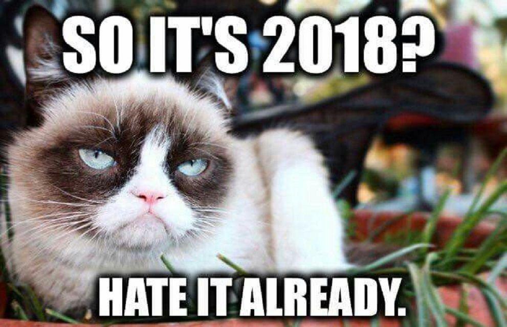 Grumpy Cat hates 2018