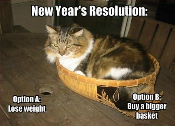 New Years Resolution Memes Cats