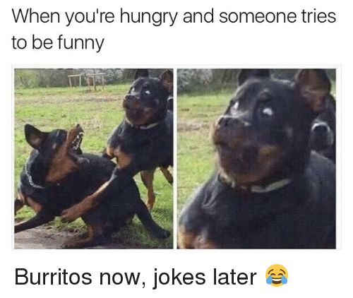 Memes 🤖 and Burrito When you re hungry and someone tries to